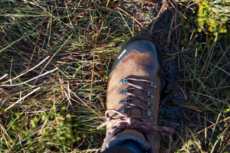 Meindl Kansas GTX boots review