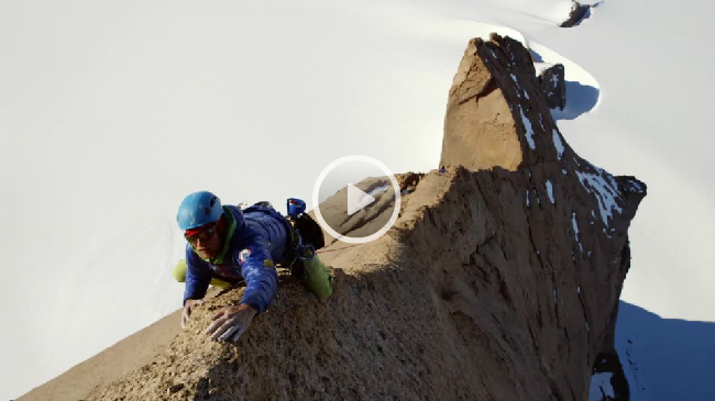 Teaser-trailer released for this year's ShAFF
